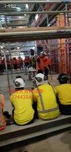 万鼎劳务服务专业化办理一手单赴澳洲新西兰做普工安全有办保障