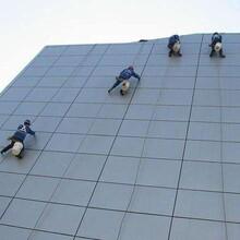 重庆沙坪坝专业高空外墙清洁玻璃幕墙图片