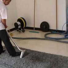重庆北碚宾馆地毯清洁公司清洗地毯图片