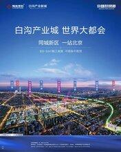 君圣蓝庭/白沟最受欢迎的楼盘京白世贸城性价比最高图片