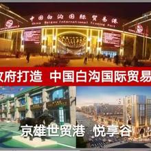 中国白沟京白世贸城投资售楼处电话图片