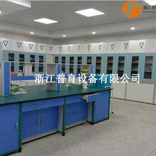 实验室成套设备浙江普育实验室仪器中小学化学准备室仪器柜通风柜可定做各类实验室