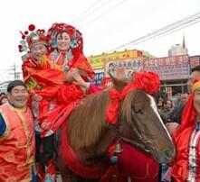 婚庆专用马,旅游用马,景区用马,跑马场用马图片