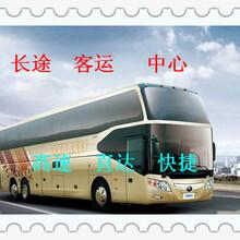 客车)即墨到南昌长途汽车在哪乘:票价多少?图片