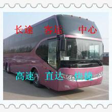 大巴+膠州到惠州汽車客車/發車時刻表/班次咨詢圖片