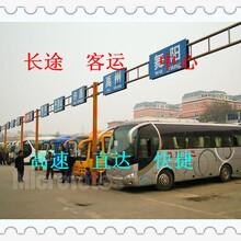 客車)青島到淮北(大巴車/歡迎您)大巴臥鋪圖片