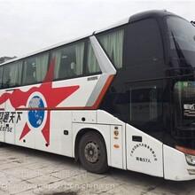 即墨到柘城(臥鋪客車+長途客運公司)圖片