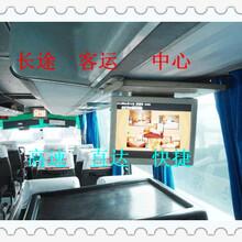 查询-黄岛到荆州直达卧铺汽车(客车票价)图片