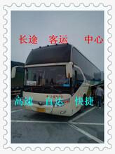 客車)青島到棗莊長途汽車票價查詢票價多少錢?圖片