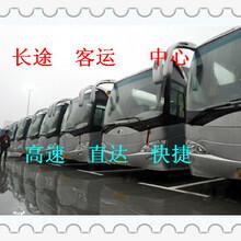 大巴+膠州到榆林汽車客車/發車時刻表/大巴咨詢圖片