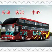 青岛到温岭汽车/客车(欢迎您):大巴车拼车图片