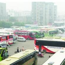 膠州到椒江大巴汽車每天發車圖片