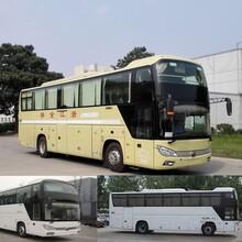 胶州到滁州直达大巴票价直达客车图片