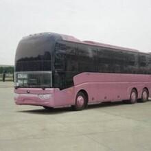 膠州到溧陽客運汽車歡迎您乘坐圖片