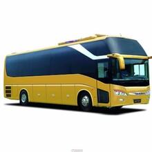 客车)青岛到泊头的长途客车安全放心图片