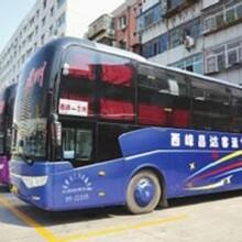 胶南到宁津的客运客车干净卫生图片