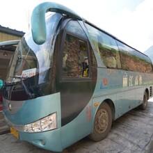 胶州到新乡的客运线上配资 客运专线图片