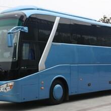 (客车)乘坐潍坊到(丹阳的专线汽车票价)每天加班车图片