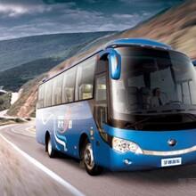 (客车)乘坐潍坊到(泗县的营运大巴票价)线路直达图片
