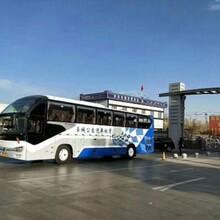 客車高密到萊陽的長途客車票價駕駛員電話圖片