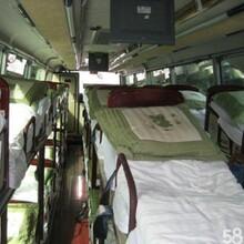 即墨到梁山的豪华客车几天可以到图片