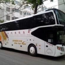 (客车)潍坊到(东港的卧铺客车票价)安全直达图片