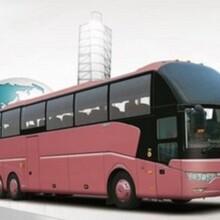 从黄岛到沧州的客运线上配资 欢迎您乘车图片