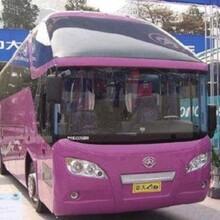 胶南到汤阴的专线客车线路图图片