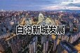 京雄世貿港四期還有小平米/淄博市周村區