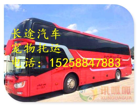 大巴)杭州到胶南的汽车(汽车直达)大巴每天发班