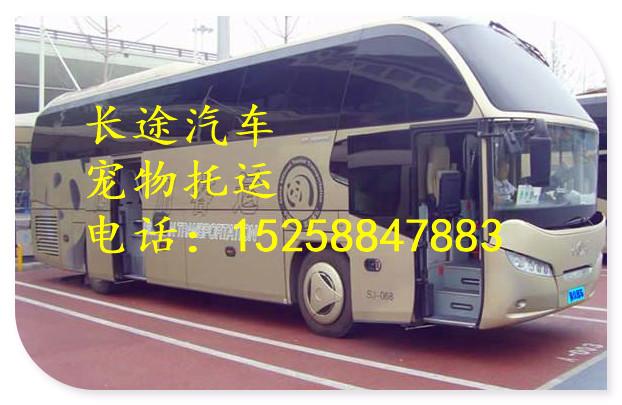 从永康发车到镇沅/大巴客车票价多少:准时发车/价格多少