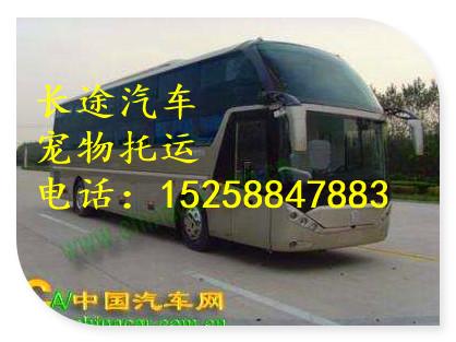 客車一一杭州到婁底直達客車152588長途汽車多久到誠信服務
