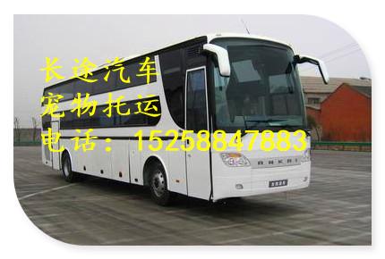 大巴)杭州到焦作客车汽车(汽车直达)大巴可以带货吗