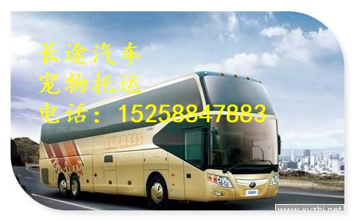 大巴)杭州到沂水汽车客车(汽车直达)大巴价格优惠