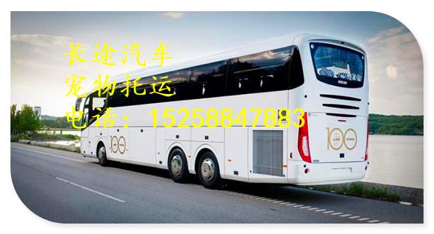 大巴)杭州到邹城大巴客车(汽车直达)大巴车型豪华