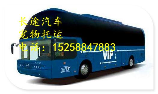 广州直达到凤冈/汽车哪里上车线路信息查询/乘车指南