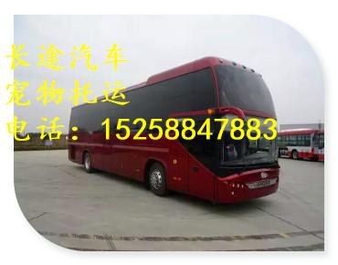 客車一一杭州到德州直達客車152588客車線路一覽表安全可靠
