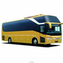 從成都到波密大巴客車/可以優惠嗎圖片