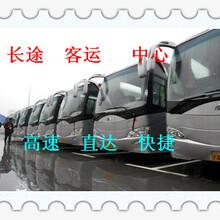 西安到乳山客車(多少錢)客運公司圖片