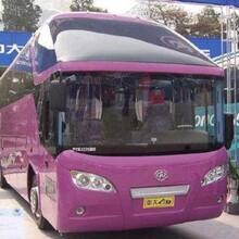 (客車)恩施到臺州的豪華客車票價+誠信快客圖片