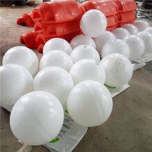 湖面区域隔离划分浮球30公分到50cm海洋浮球批发图片
