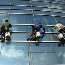 凤岗专业承接玻璃清洗哪家好玻璃清洗图片