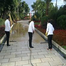 广州专业从事小区保洁服务周到小区保洁图片