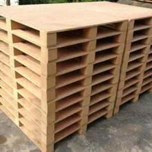 广州专业承接胶合板卡板行业领先多层板卡板持久耐用图片