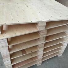 江门专业承接胶合板卡板放心省心持久耐用多层板卡板图片