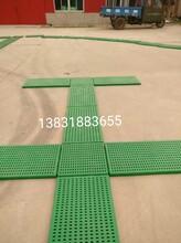 廠家直供糧食儲備庫庫專用糧面走道板衡水中凱直銷圖片