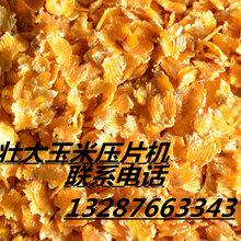 山东壮大农牧玉米压片机