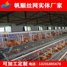 养鸡笼厂家批发立式三层育雏笼养鸭笼家禽笼图片