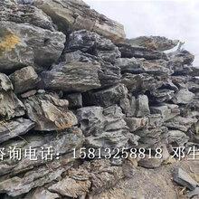 台州专业从事大英石厂家大英石批发报价指导安装图片