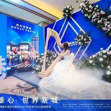 雄-安产业新城京雄世贸港领秀城-楼盘投资价值_胶州图片